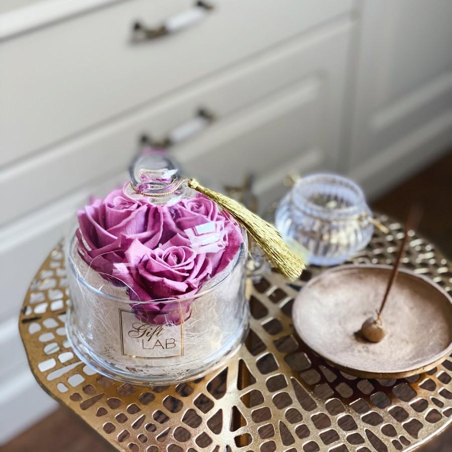 Rausvos  miegančios rožės po gaubtu (pelenų rausva)