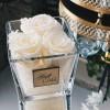 Baltos / kreminės miegančios rožės stiklo vazoje